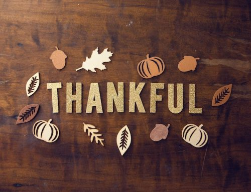 Gratitude: A Few Thoughts From Our President, Jeff Russell